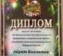 VIII Международный фестиваль-конкурс башкирской и татарской песни «Идель»