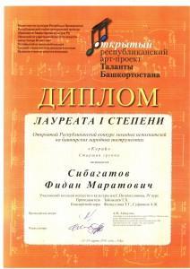 Сибагатов Ф_ ТБ 2016