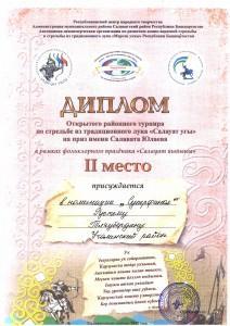 Тляубердин Р_Р_ 2 место Салауат угы
